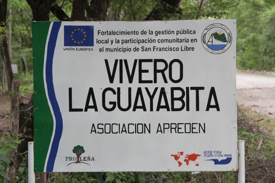 La Guayabita