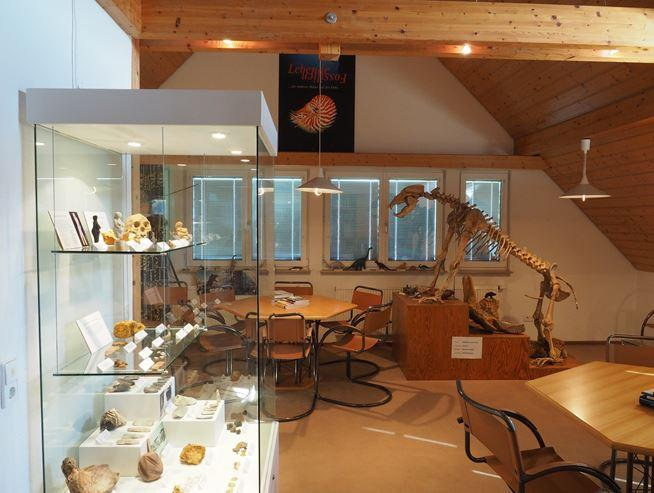 Museum Zeitzeugen