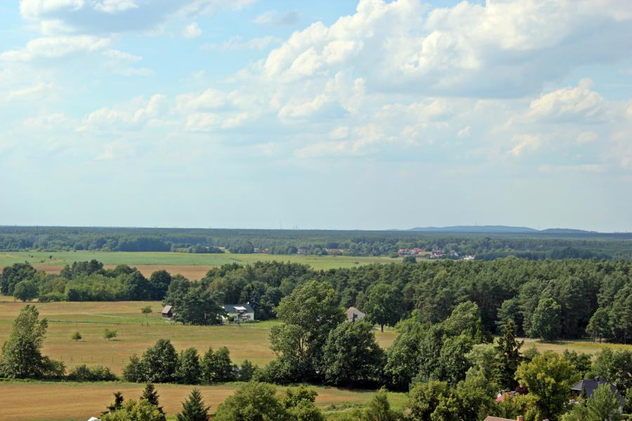Ein Blick von Friedersdorf nach Berlin, wo man am Horizont sogar den Fernsehturm sieht.