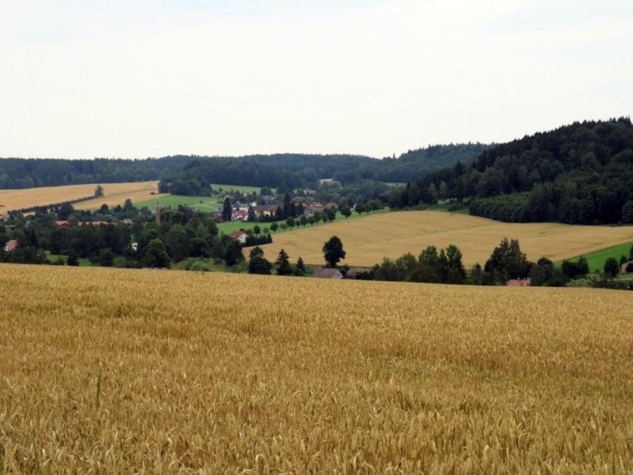 Blick nach Taubenheim