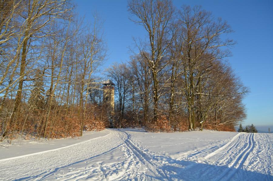 Winterblick zum Turm