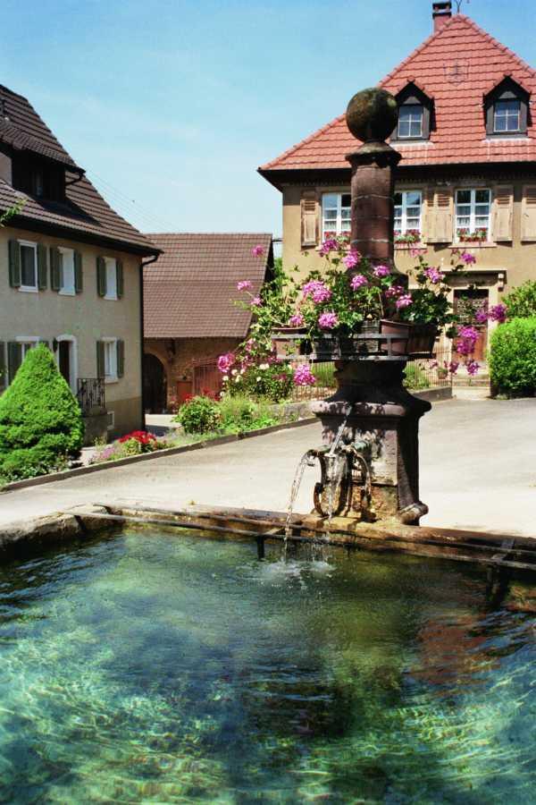 Brunnen Tannenkirch