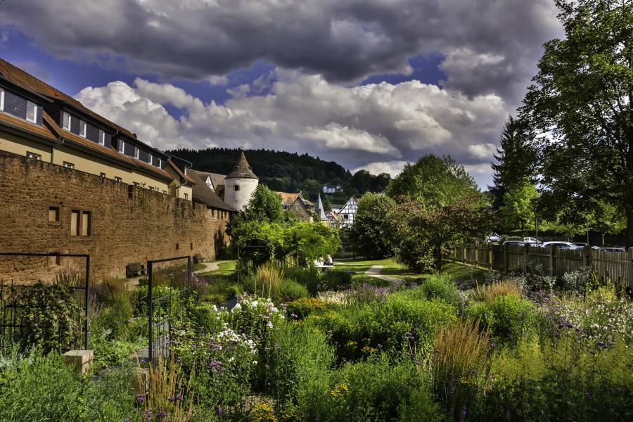 Garten Kölsch, Büdingen (c) Thomas Appel