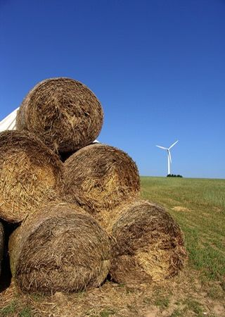 Energiewende in Bürgerhand