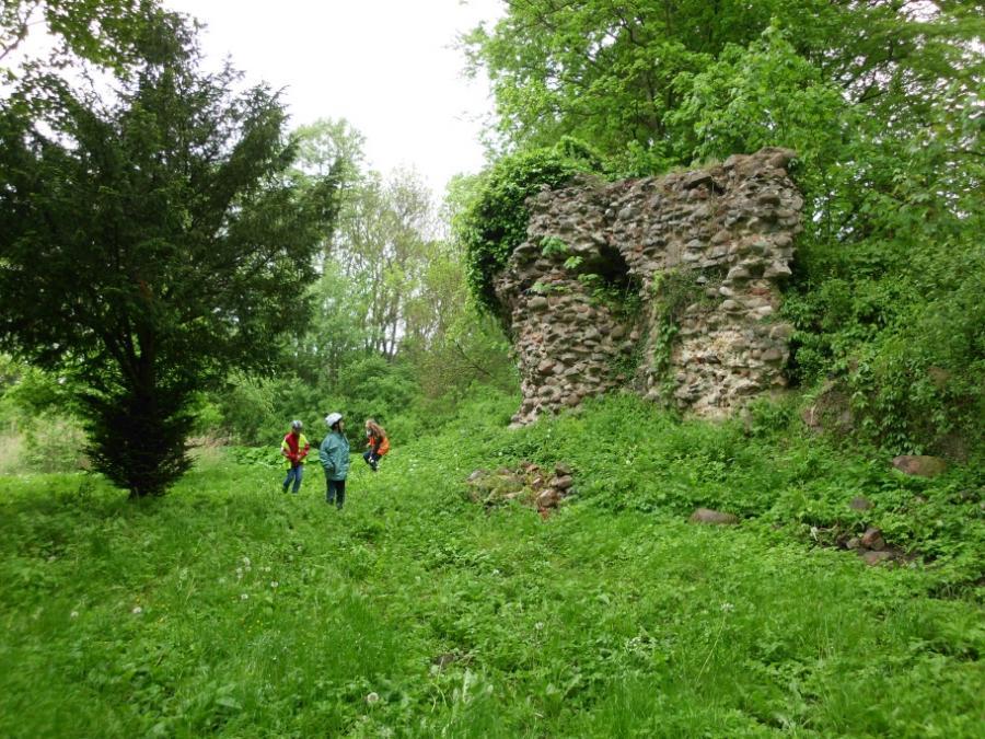 Burgruine Mesendorf