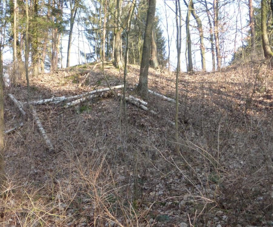 Burgwall Spitzmühle