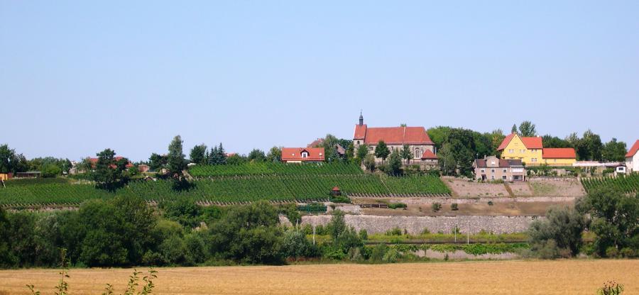 Burgwerbener Herzogsberg