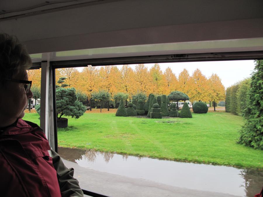 Fahrt über Baumschule im Herbst