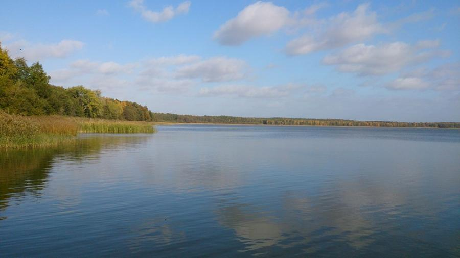 Goldberger See