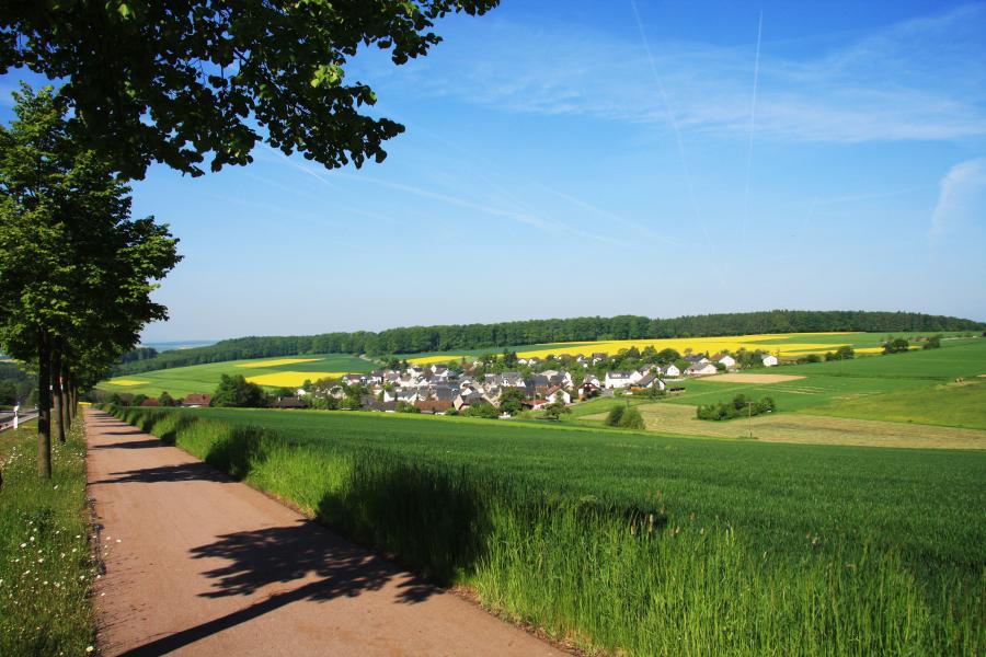 Sommer, Blick vom Radweg aus Richtung Bäderstraße