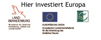 Hier investiert Europa