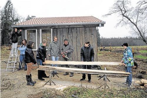 Rhein-Hunsrück-Zeitung vom Donnerstag, 31. Januar 2013, Seite 17