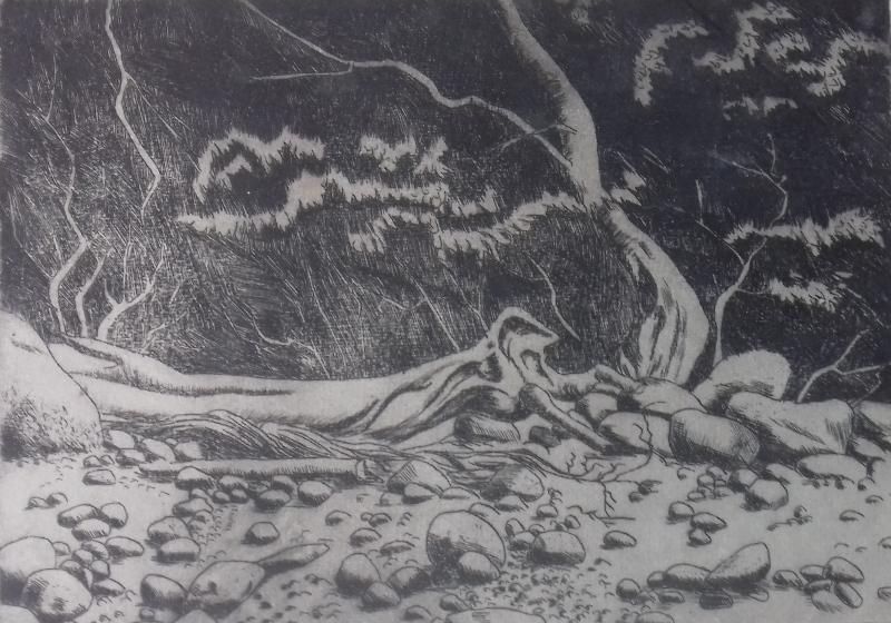 Steinige Küste1988 Radierung35,5 x 26 cm