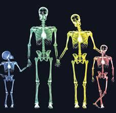 Familienbild Röntgen