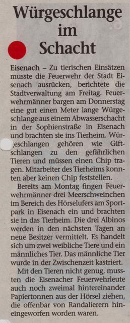 FW 2015.08.15 Würgeschlange im Schacht