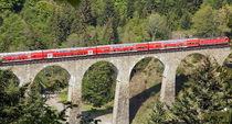 Schienenersatzverkehr auf der Höllentalbahn zwischen Kirchzarten und Titisee-Neustadt - Foto: Joachim Hahne