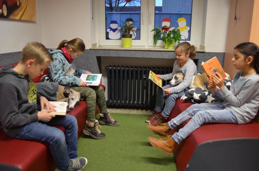 Schulhunde lesen