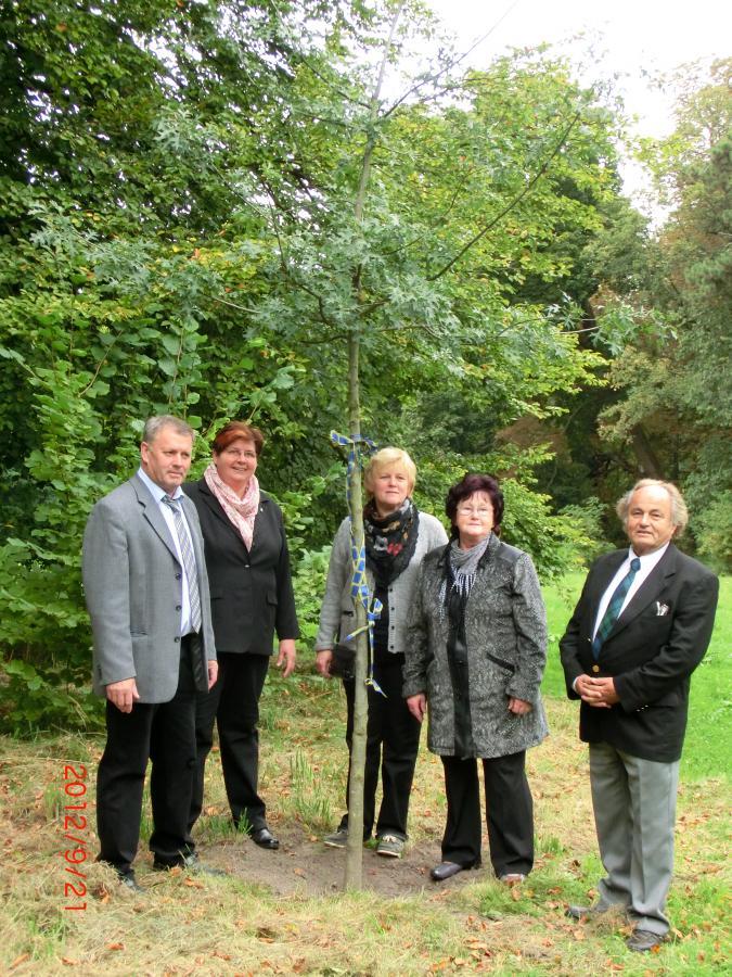 Baumspende des Denkmalpflegevereins