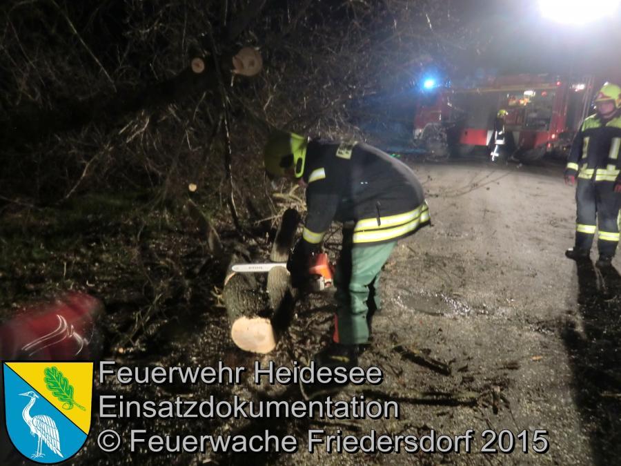 Einsatz 56/2015 Baum auf Straße Friedersdorf Grüner Weg 31.03.2015