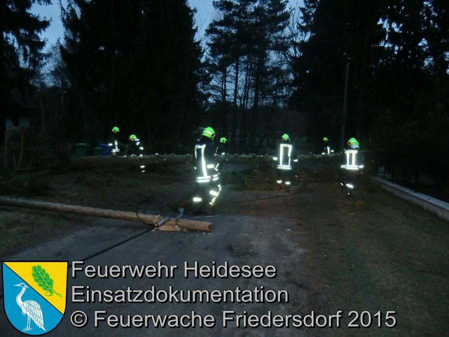 Einsatz 62/2015 Baum auf Straße Friedersdorf Straße Nr.2 01.04.2015