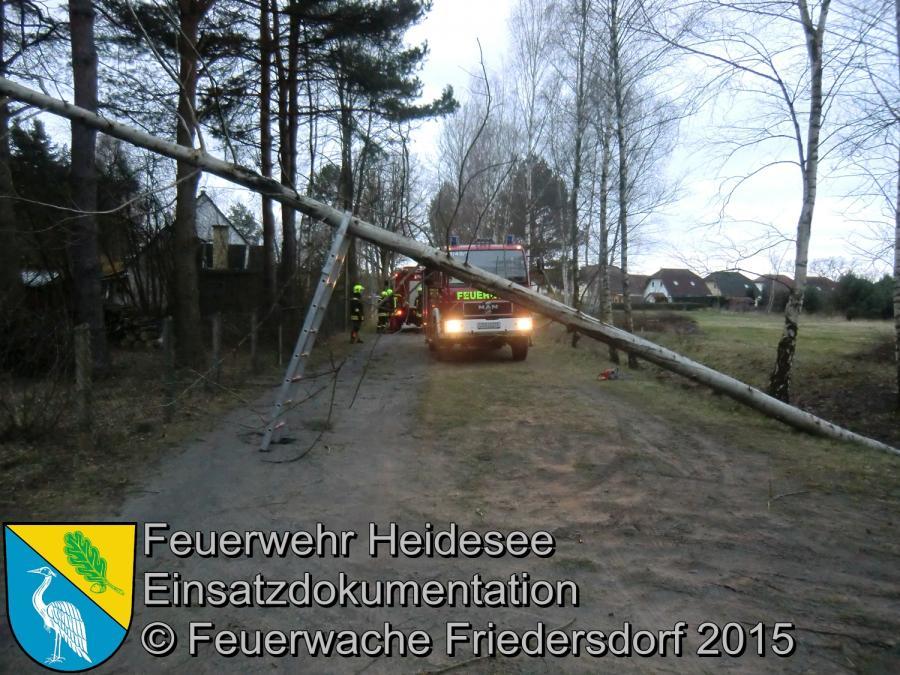 Einsatz 63/2015 Baum in Telefonleitung Friedersdorf Straße Nr.1 01.04.2015