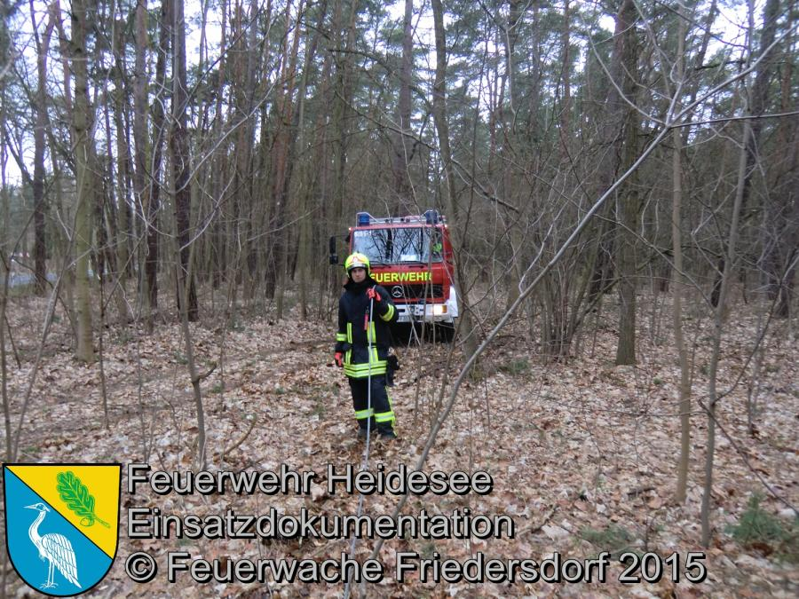 Einsatz 66/2015 Baum droht zu fallen L40 OV Wolzig - Kummersdorf (LOS) 01.04.2015