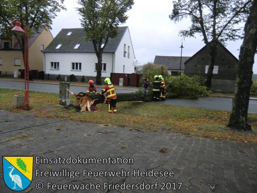 Einsatz 147/2017 | Baum auf Straße | Friedersdorf Lindenstraße | 05.10.2017
