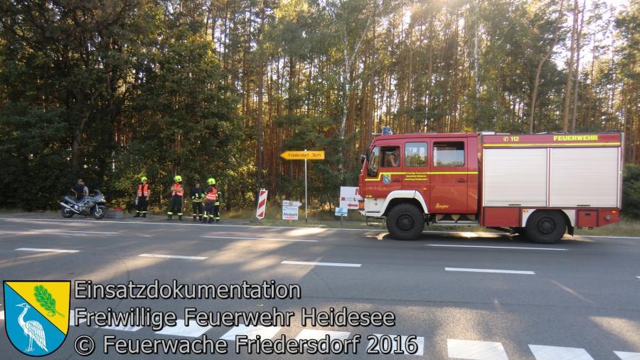 Einsatz 91/2016 | 50m Ölspur | L39 AS Friedersdorf 06.09.2016