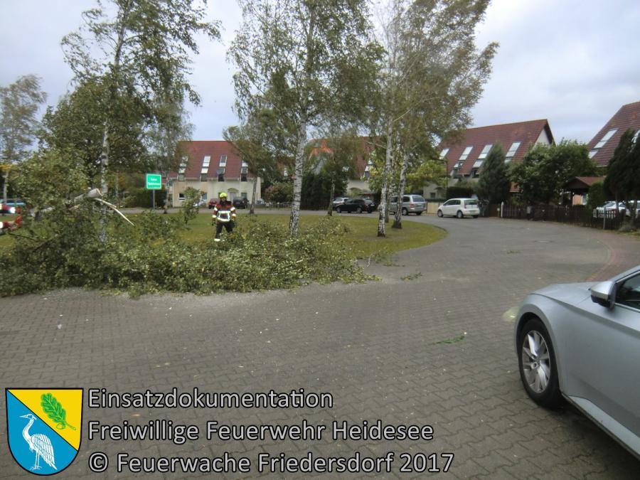 Einsatz 153/2017 | Baum über Straße | Friedersdorf Brandenburger Straße | 05.10.2017