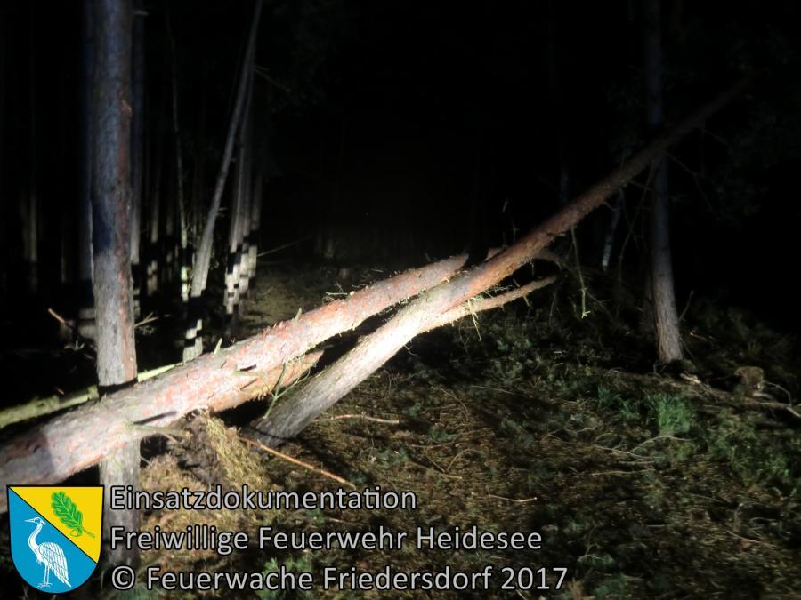 Einsatz 252/2017 | 9 Bäume über Straße | Friedersdorf Kirschenweg | 05.10.2017