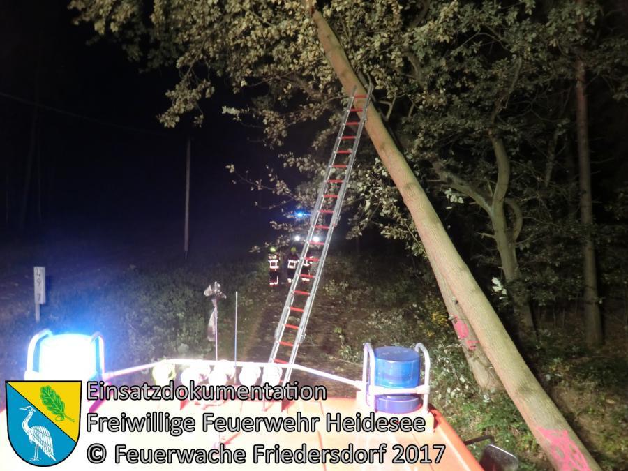 Einsatz 262/2017 | Baum droht zu stürzen | OV Bindow - Kablow | 05.10.2017