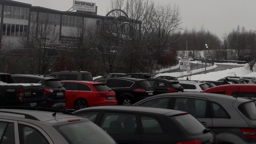 Parkplatzeinweisung und Verkehrsabsicherung 03.02.2019