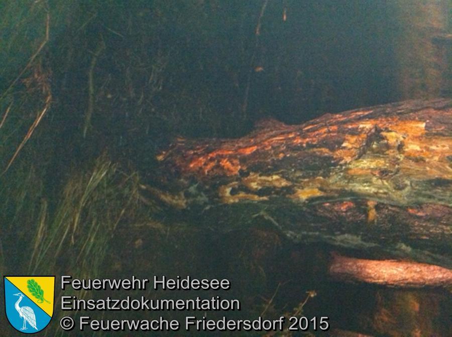 Einsatz 128/2015 Baumbrand nach Blitzeinschlag Wolzig Friedersdorfer Straße 04.08.2015