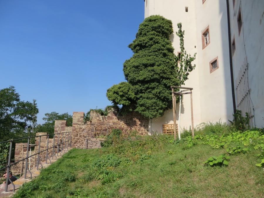 Westseite der Burg