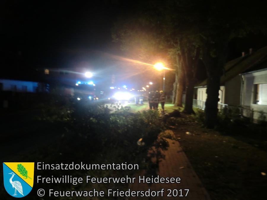 Einsatz 255/2017 | Ast droht zu stürzen | Friedersdorf Lindenstraße | 05.10.2017