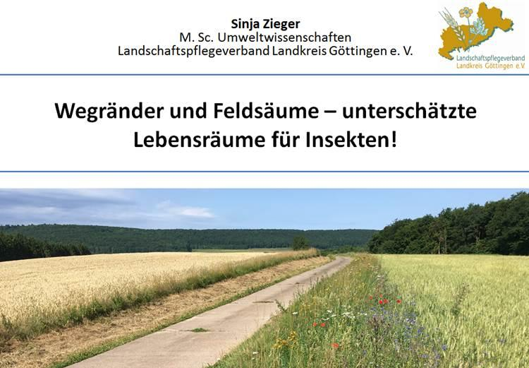Deckblatt Präsentation Wegraine