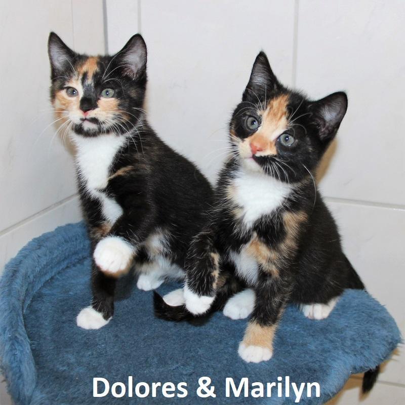 Dolores & Marilyn