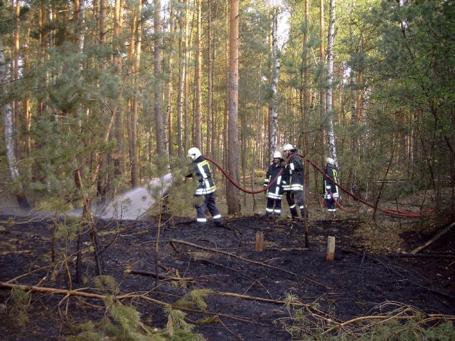Einsatz 14/2004 Waldbrand Prieros 30.03.2004