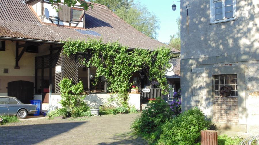 Überdachte Terrasse mit Weinranken