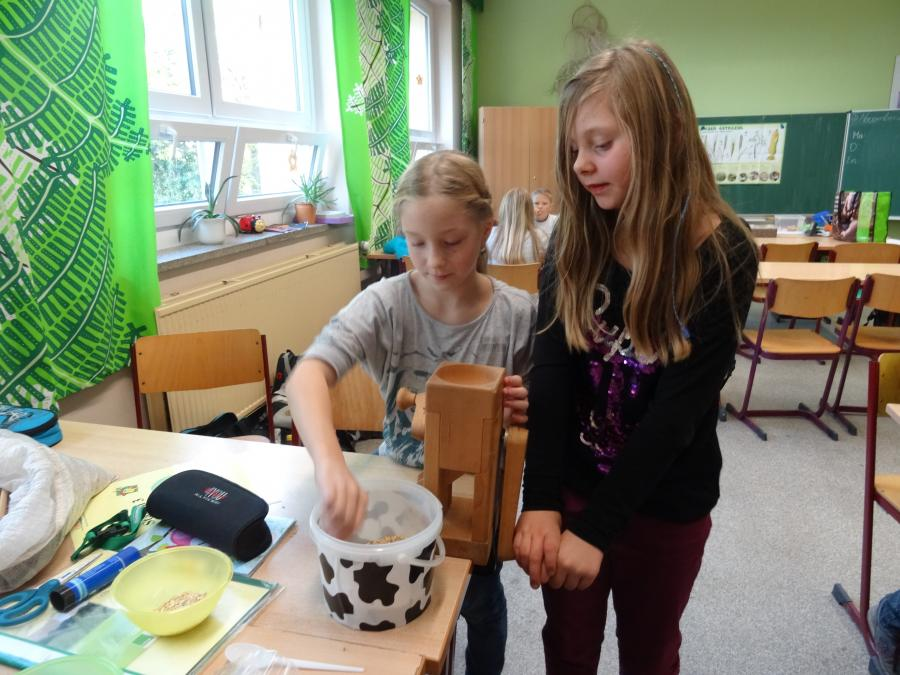 Getreide-Projekt