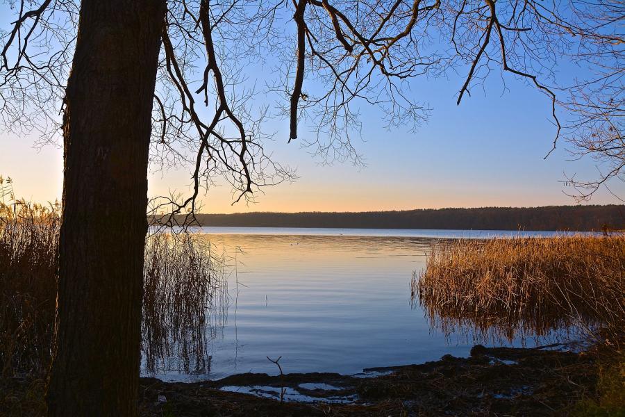 Stienitzsee