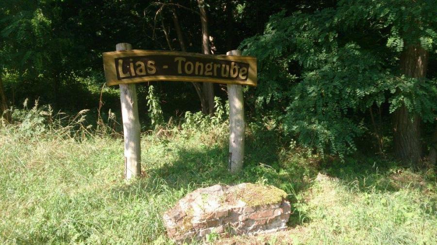 Lias - Tongrube