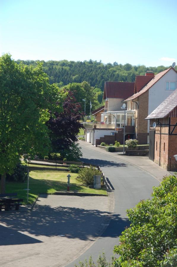 Blick vom Balkon zum Bramwald