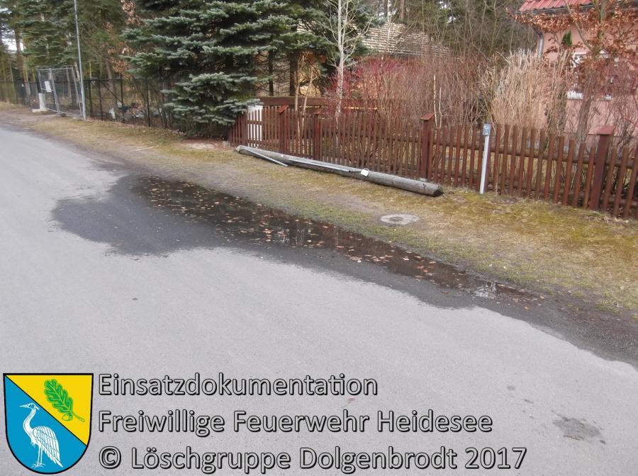 Einsatz 15/2017 | Telefonmast auf Straße | Bindow Mariannenstraße 18.03.2017