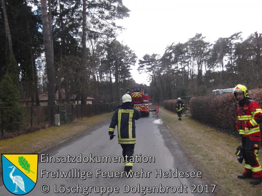Einsatz 16/2017 | großer Ast droht zu stürzen | Bindow Mariannenstraße 18.03.2017