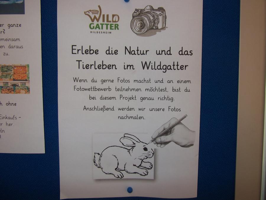 Projektbeschreibung - Besuch des Wildgatters