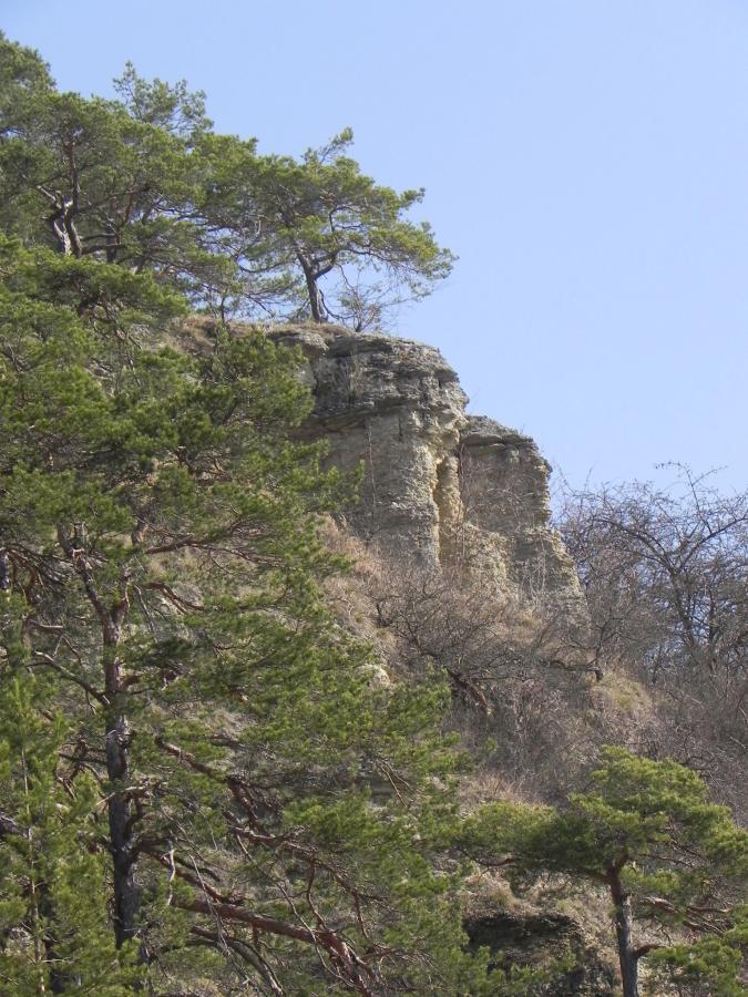 Steinberg Teichel