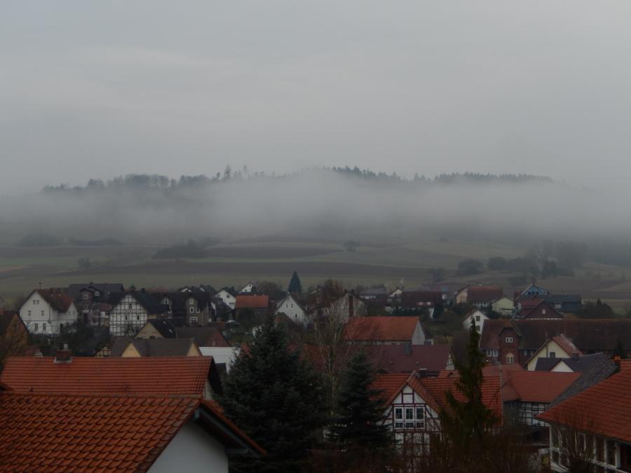 Blick übers Dorf am 100315