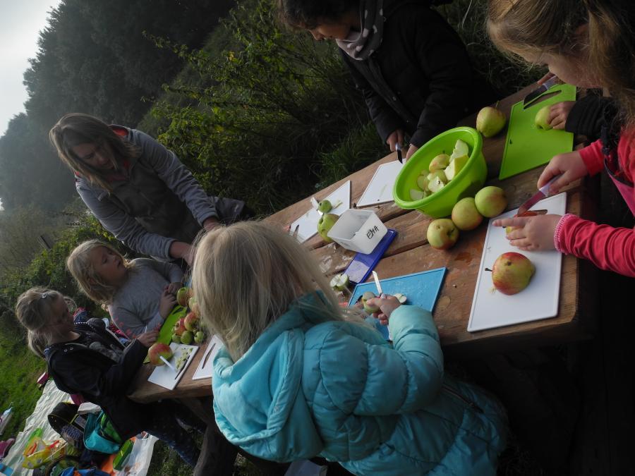 Apfelgarten 5