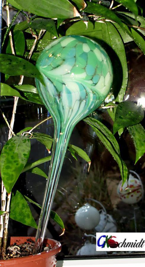 Durstkugel-Grünmischung